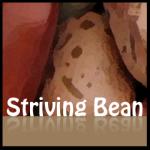 delicious.com/strivingbean