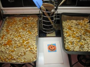 Dry pumpkin seeds before baking